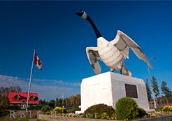 Statue of Canadian Goose